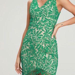 Lulus (never been worn) dress